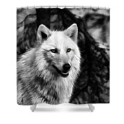 Black And White Painted Wolf Shower Curtain