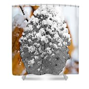 Black And White Snow Leaf Shower Curtain