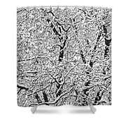 Black And White Snowy Tree Branches Abstract Six Shower Curtain