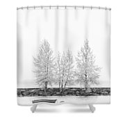 Black And White Square Tree  Shower Curtain