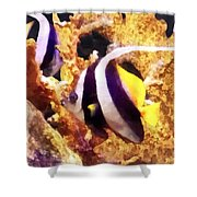 Black And White Striped Angelfish Shower Curtain
