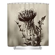 Black And White Thistle Shower Curtain