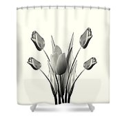 Black And White Tulips Drawing Shower Curtain
