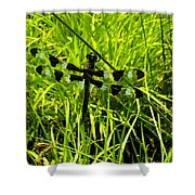 Black And White Winged Dragonfly Shower Curtain