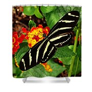Black And Yellow Butterfly Shower Curtain