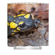 Black And Yellow Shower Curtain