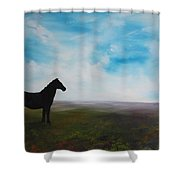 Black As Night In The Light Of Day Shower Curtain