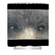 Black Bear Eyes Wildlife Animal Art Shower Curtain
