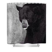 Black Bear Pose Shower Curtain