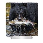 Black Bear With Salmon Shower Curtain
