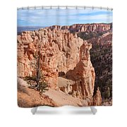 Black Birch Canyon Lookout Shower Curtain