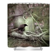 Black Bird In Forgotten Graveyard Shower Curtain