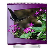 Black Butterfly 07 Shower Curtain