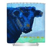 Black Calf Shower Curtain
