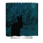 Black Cat In The Moonlight Blue Shower Curtain