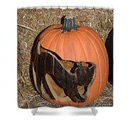 Black Cat On Pumpkin Shower Curtain