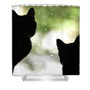 Black Cat Silhouettes Shower Curtain