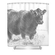 Black Cow Pencil Sketch Shower Curtain