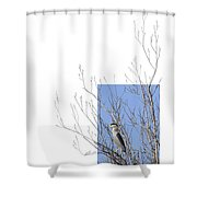 Black-crowned Night-heron Shower Curtain