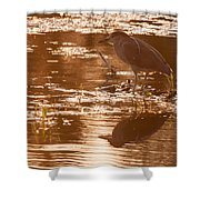 Black-crowned Night Heron Sunset Shower Curtain