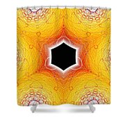 Black Cube Shower Curtain