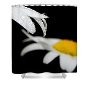 Black Daisy Reflection Shower Curtain