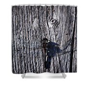 Black Darter Shower Curtain
