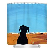 Black Dog In Chestertown, 1998 Shower Curtain