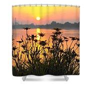 Black-eyed Susans Sunrise Shower Curtain