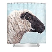 Black Face Sheep Shower Curtain