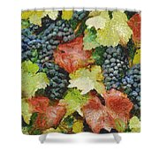 Black Grapes Shower Curtain