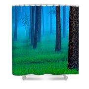 The Black Hills Forest Shower Curtain by Kadek Susanto