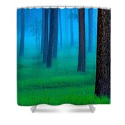 Black Hills Forest Shower Curtain by Kadek Susanto