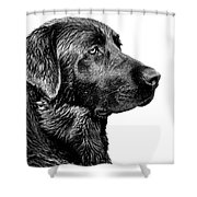 Black Labrador Retriever Dog Monochrome Shower Curtain