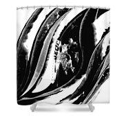 Black Magic 302 By Sharon Cummings Shower Curtain