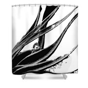 Black Magic 303 By Sharon Cummings Shower Curtain