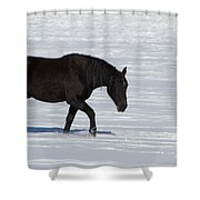 Black Magic Shower Curtain