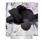 Black Magnolia Shower Curtain
