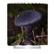 Black Mushroom Shower Curtain