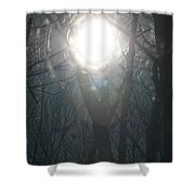 Black On Sun   Shower Curtain