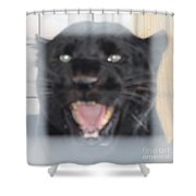 Black Panther Caged And Angry Shower Curtain