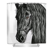 Black Pearl Shower Curtain