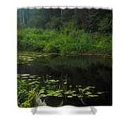 Black Pond Shower Curtain