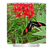 Black Red And White Butterfly Shower Curtain