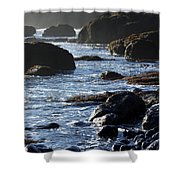 Black Rocks And Sea  Shower Curtain