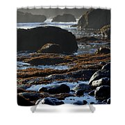 Black Rocks Lichen And Sea  Shower Curtain