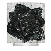 Black Rose I Shower Curtain