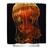 Black Sea Nettle Shower Curtain