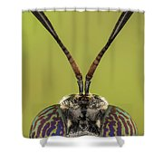Black Soldier Fly 3x Shower Curtain