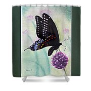 Black Swallowtail Butterfly By George Wood Shower Curtain